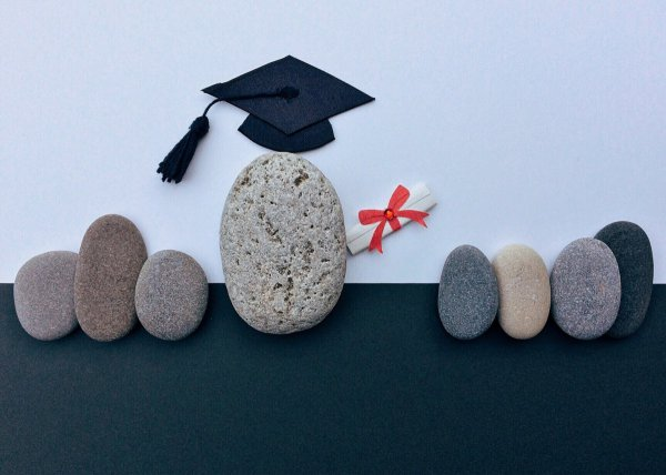 Как защитить дипломную работу на отлично Новости Новосибирска защита диплома