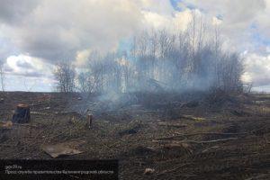 Дачник под Новосибирском надышался угарного газа после пала травы