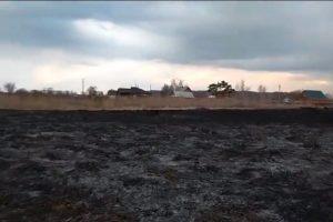 Житель Новосибирской области поджег траву и чуть не сжег дома