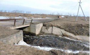 Три бесхозных пруда в Искитимском районе ждут суда