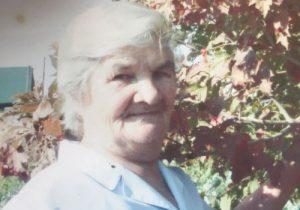 Волонтёры ищут в Черепаново пропавшую 78-летнюю пенсионерку