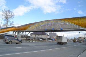 Пьяный житель Бердска грозился прыгнуть с моста через трассу Р-256