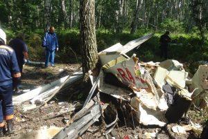 МАК расследует крушение легкомоторного самолета в Новосибирске