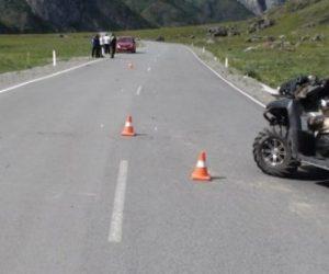 ДТП из-за овцы: двое новосибирцев перевернулись на квадроцикле на Алтае