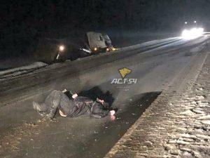 В Новосибирской области фура сбила пьяного мужчину и улетела в кювет