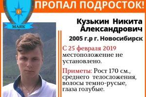 В Новосибирске ищут подростка в малиновых кроссовках
