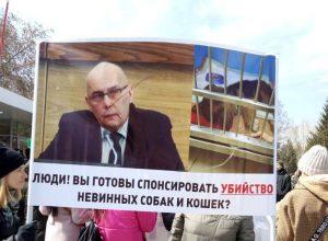 Зоозащитники устроили митинг в центре Новосибирска