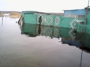 В Новосибирской области затопило деревни Пихтовка и Старый Карапуз