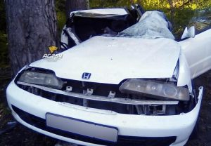 Разбился насмерть о дерево водитель Honda Integra под Новосибирском