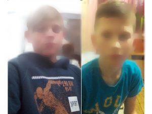 Волонтеры нашли пропавших мальчиков из Искитима
