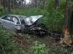 ДТП в Новосибирске: Audi влетела в дерево и лишилась переда