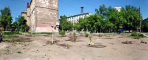 На скандальной стройке бизнес-центра на Советской высадили 30 деревьев