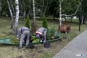 Рабочие убрали цветы с цветочных скульптур на Михайловской набережной