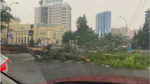 На Новосибирск обрушился ураган с сильным ветром