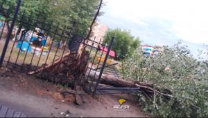 Ураган снес крыши в Новосибирской области