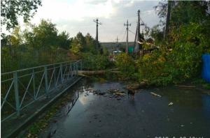 В Новосибирском районе сильный ветер сорвал крыши и повалил деревья