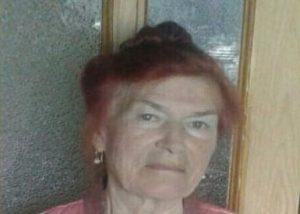 Вездеходная техника вышла на поиск пенсионерки, пропавшей в Колыванском районе