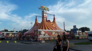 В Новосибирске протестуют против жестокого обращения с животными в цирке