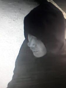 Подозреваемый в серии грабежей задержан в Новосибирске