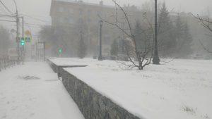 Снегопад заблокировал трассы в Новосибирской области