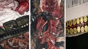 Браконьеры убили восемь косуль в Новосибирской области