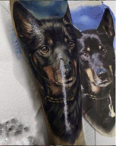 Кинологу из Германии в Новосибирске набили тату с собакой