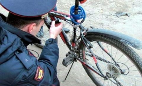 Велосипедист с коноплей задержан сотрудниками ГАИ под Новосибирском