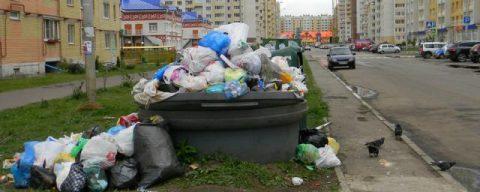 Регоператор будет лишен своего статуса в Новосибирске