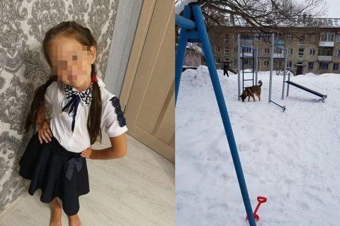 Бездомная собака напала на школьницу в Новосибирске