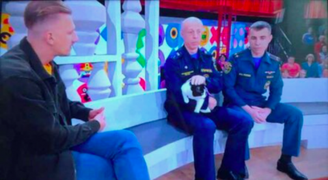 Новосибирский кот Гидрант стал героем телешоу на Первом канале