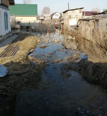 400 домов в Бердске затопило грунтовыми водами