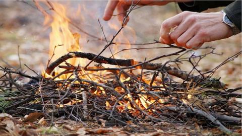 В Новосибирской области ввели особый противопожарный режим