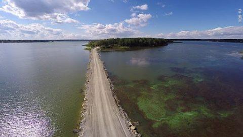 В Новосибирске создадут парк на острове