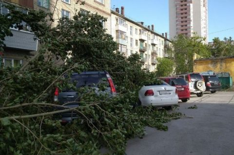 В Новосибирске во время урагана пострадали четыре человека