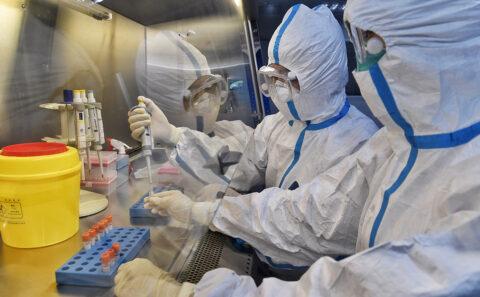 В Новосибирском Академгородке создали искусственный геном коронавируса
