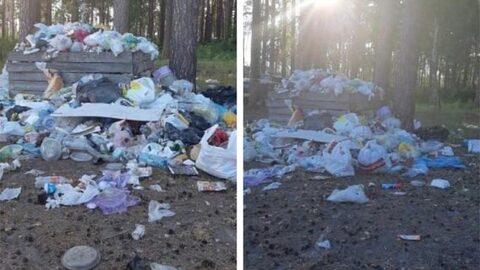 На пляже в Боровом нашли незаконную свалку