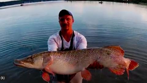 Огромную щуку весом 13 килограммов поймал новосибирец