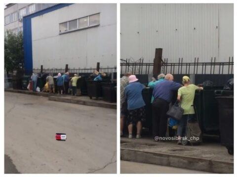 Пенсионеры Новосибирска роются в мусорных баках