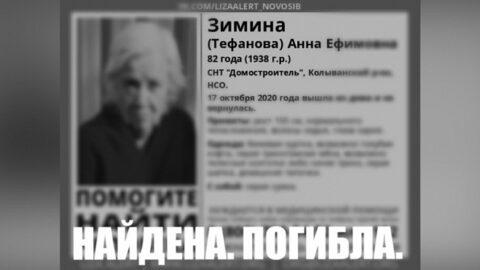Заблудившуюся в поле новосибирскую бабушку нашли погибшей