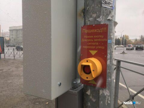 Новый светофор появился у пешеходного перехода на площади Ленина