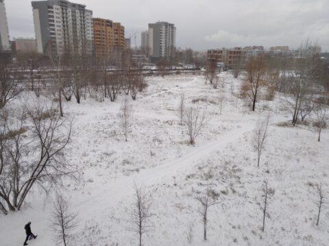 В Академгородке выпал весь снег Новосибирска
