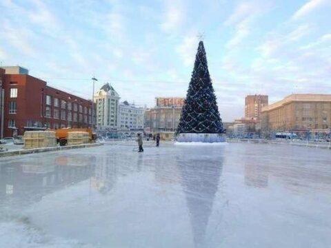 Новогодняя елка в Новосибирске обойдется в миллион рублей