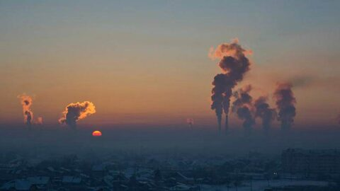 В Новосибирске нашли способ очистить воздух