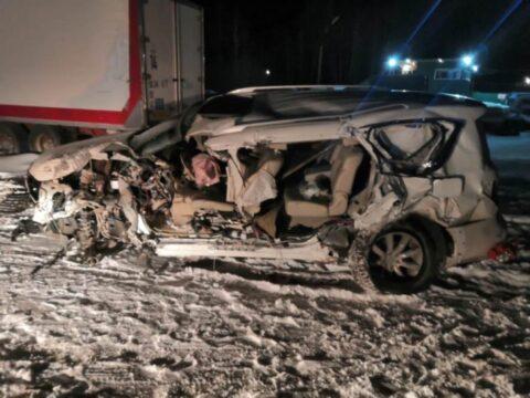 Под Новосибирском произошло массовое ДТП