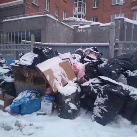 С контейнерных площадок в Новосибирске не вывозят мусор