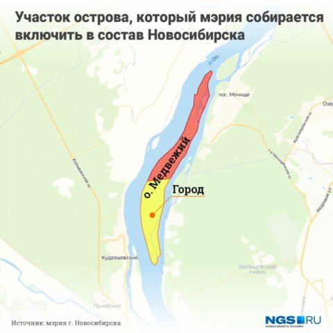 Часть Медвежьего острова войдет в территорию Заельцовского бора