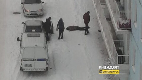 В Новосибирске девушка упала с девятого этажа и погибла