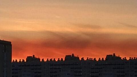 В Новосибирске заметили необычный закат