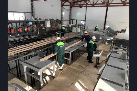 В Новосибирской области запустили новую производственную линию по производству древесины