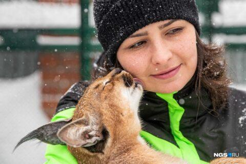 Сибирячка завела себе дома каракалов